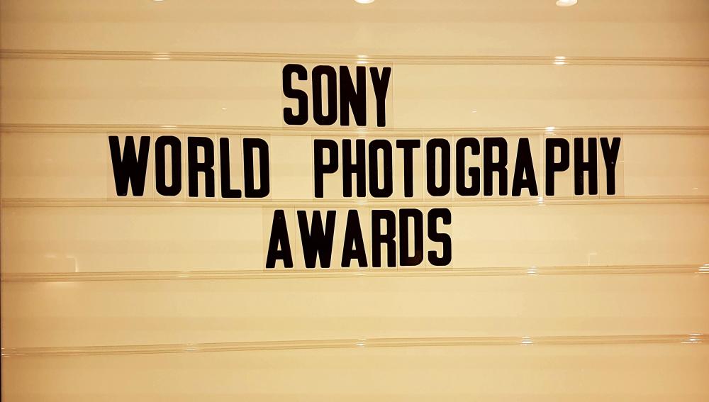 Τέσσερις Έλληνες φωτογράφοι στους φιναλίστ των Sony World Photography Awards 2019